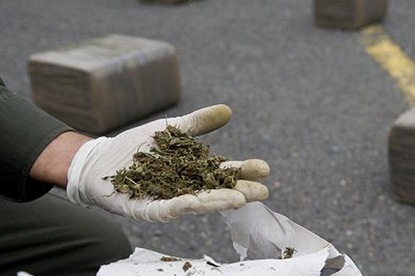 Largest drug bust