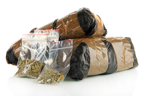 Marijuana Possession, marijuana charges, marijuana bust